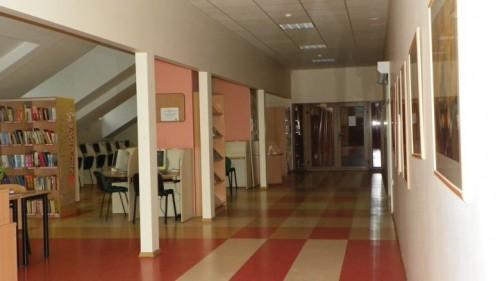 Mokyklos bibliotekos vaizdelis